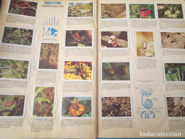 Coleccionismo Álbum: NATURALEZA FHER - Foto 17 - 210358070