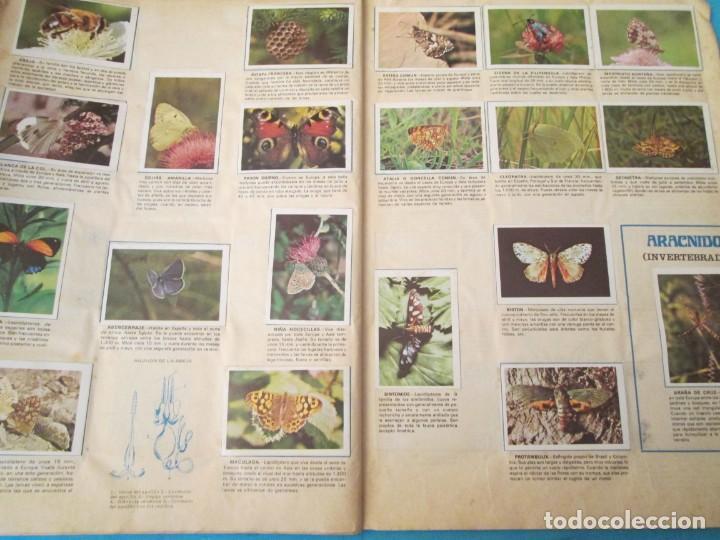 Coleccionismo Álbum: NATURALEZA FHER - Foto 18 - 210358070