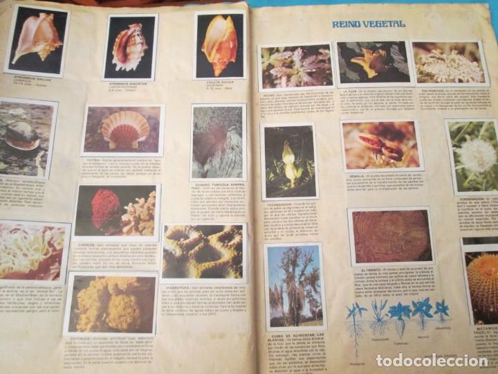 Coleccionismo Álbum: NATURALEZA FHER - Foto 20 - 210358070