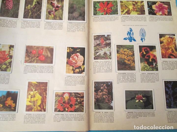 Coleccionismo Álbum: NATURALEZA FHER - Foto 22 - 210358070