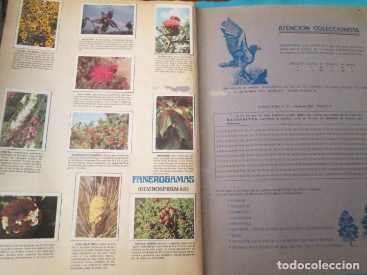 Coleccionismo Álbum: NATURALEZA FHER - Foto 23 - 210358070
