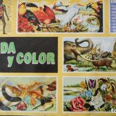 Coleccionismo Álbum: ÁLBUM VIDA Y COLOR (COMPLETO). Lote 225788213