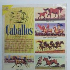 Coleccionismo Álbum: CABALLOS N°52 * NOVARO * AÑO 1971 - ALBUM COMPLETO Y EN MUY BUEN ESTADO. Lote 226817786