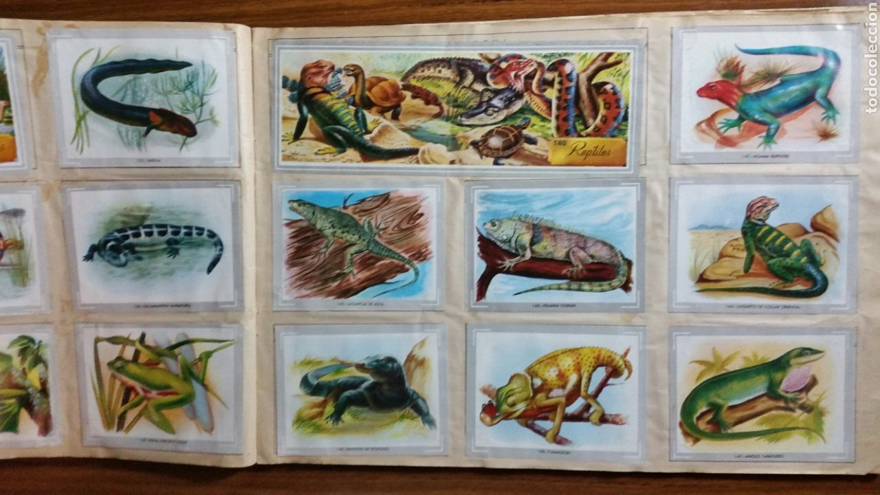Coleccionismo Álbum: Álbum de cromos VIDA Y COLOR completo 380 cromos - Foto 3 - 235850390