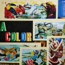 Coleccionismo Álbum: ÁLBUM DE CROMOS VIDA Y COLOR COMPLETO 380 CROMOS. Lote 235850390