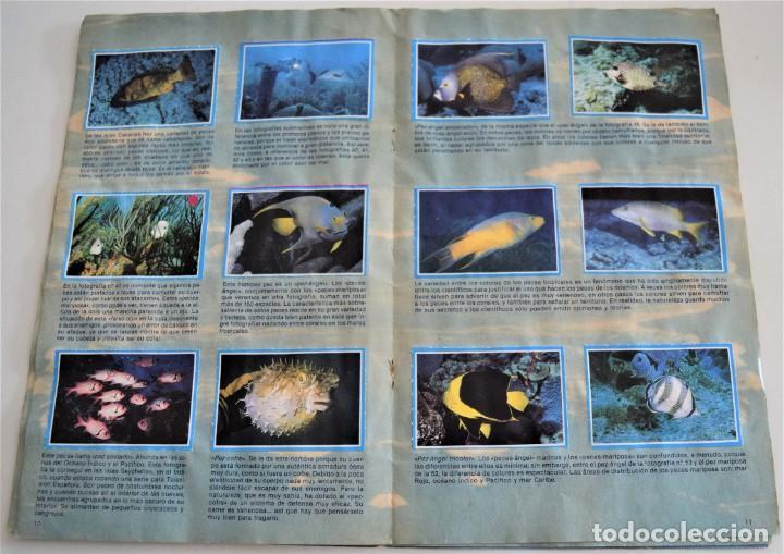 Coleccionismo Álbum: MIS AMIGOS LOS PECES - ALBUM COMPLETO - TELEINDISCRETA - Foto 6 - 244024880