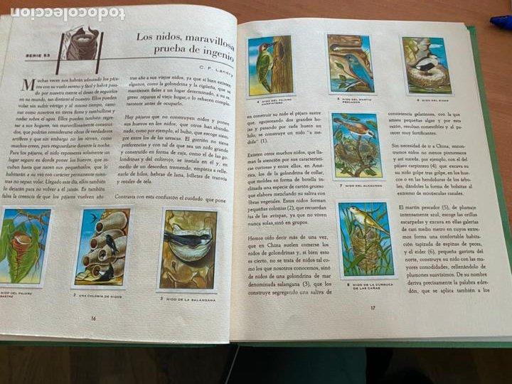Coleccionismo Álbum: LAS MARAVILLAS DEL UNIVERSO * * * NETSLE ALBUM COMPLETO CON HOJA CUPONES (COIB26) - Foto 10 - 255549865