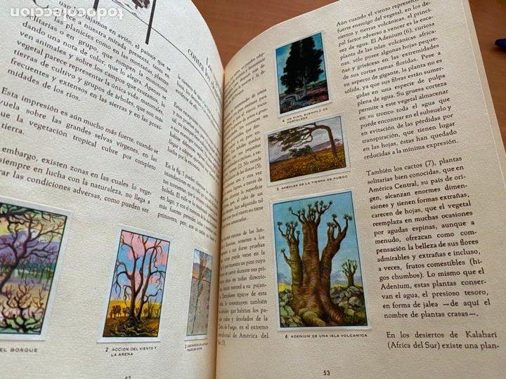 Coleccionismo Álbum: LAS MARAVILLAS DEL UNIVERSO * * * NETSLE ALBUM COMPLETO CON HOJA CUPONES (COIB26) - Foto 15 - 255549865