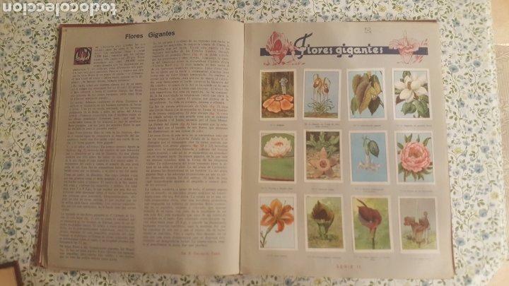 Coleccionismo Álbum: ALBUM DE CROMOS. LAS MARAVILLAS DEL MUNDO. NESTLE - Foto 4 - 257556630