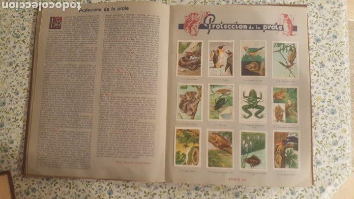Coleccionismo Álbum: ALBUM DE CROMOS. LAS MARAVILLAS DEL MUNDO. NESTLE - Foto 12 - 257556630