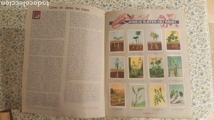 Coleccionismo Álbum: ALBUM DE CROMOS. LAS MARAVILLAS DEL MUNDO. NESTLE - Foto 13 - 257556630