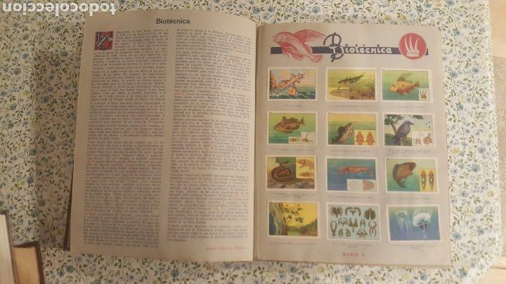 Coleccionismo Álbum: ALBUM DE CROMOS. LAS MARAVILLAS DEL MUNDO. NESTLE - Foto 14 - 257556630