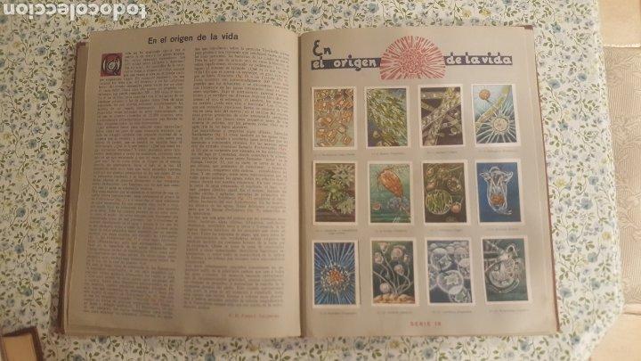 Coleccionismo Álbum: ALBUM DE CROMOS. LAS MARAVILLAS DEL MUNDO. NESTLE - Foto 16 - 257556630