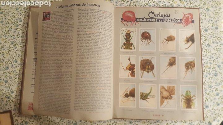 Coleccionismo Álbum: ALBUM DE CROMOS. LAS MARAVILLAS DEL MUNDO. NESTLE - Foto 20 - 257556630