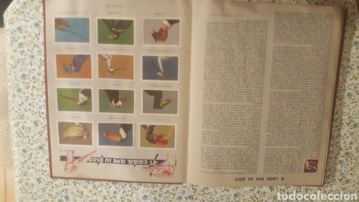 Coleccionismo Álbum: ALBUM DE CROMOS. LAS MARAVILLAS DEL MUNDO. NESTLE - Foto 24 - 257556630
