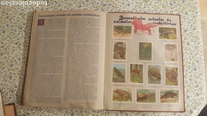 Coleccionismo Álbum: ALBUM DE CROMOS. LAS MARAVILLAS DEL MUNDO. NESTLE - Foto 35 - 257556630