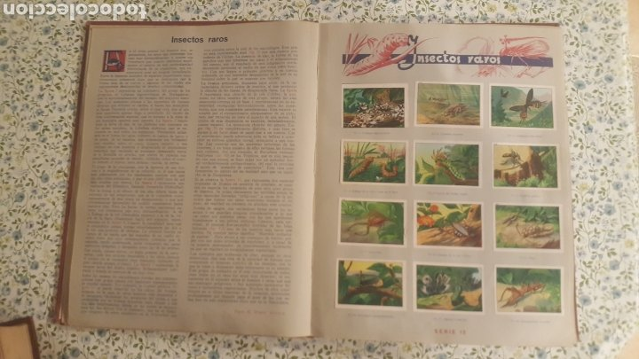 Coleccionismo Álbum: ALBUM DE CROMOS. LAS MARAVILLAS DEL MUNDO. NESTLE - Foto 2 - 257556630