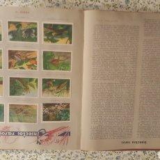 Coleccionismo Álbum: ALBUM DE CROMOS. LAS MARAVILLAS DEL MUNDO.. Lote 257556630