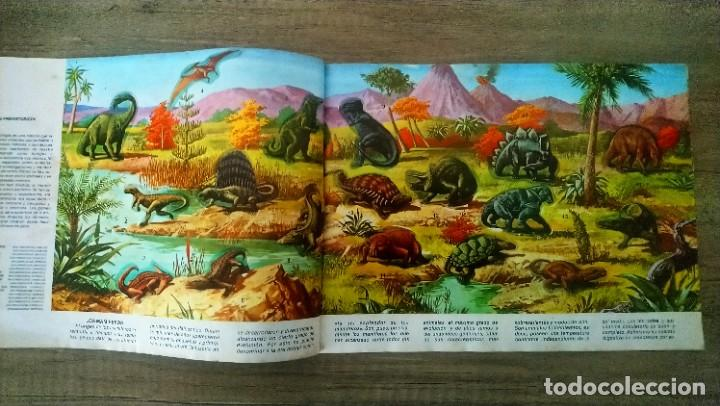Coleccionismo Álbum: animales salvajes - Foto 2 - 278980678