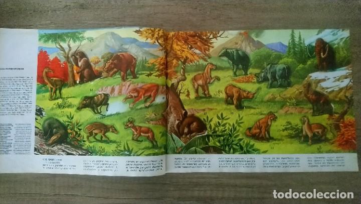 Coleccionismo Álbum: animales salvajes - Foto 3 - 278980678