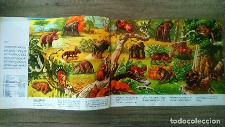 Coleccionismo Álbum: animales salvajes - Foto 4 - 278980678