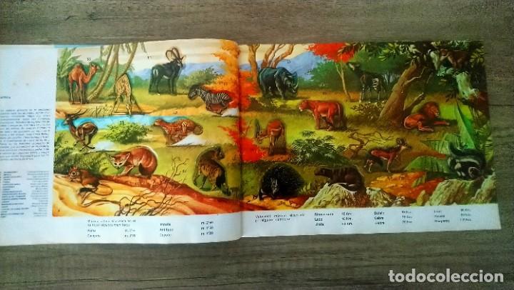 Coleccionismo Álbum: animales salvajes - Foto 5 - 278980678