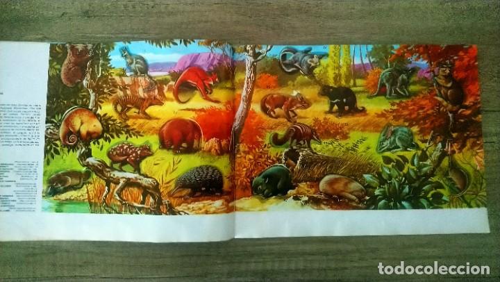 Coleccionismo Álbum: animales salvajes - Foto 6 - 278980678