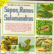 Coleccionismo Álbumes: SAPOS RANAS Y SALAMANDRAS ( NOVARO ) ORIGINAL 1962. Lote 27366121