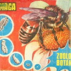 Coleccionismo Álbumes: ALBUM MAGA: ZOOLOGIA Y BOTANICA (INCOMPLETO) (VALENCIA, 1969). Lote 21695115