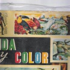 Coleccionismo Álbumes: VIDA Y COLOR . ALBUMES ESPAÑOLES 1965. FALTAN 47 CROMOS. Lote 22095946