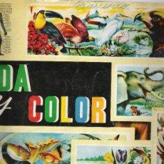 Coleccionismo Álbumes: VIDA Y COLOR . ALBUMES ESPAÑOLES 1965. FALTAN 62 CROMOS. Lote 22095947