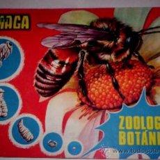 Coleccionismo Álbumes: ÁLBUM DE MAGA ZOOLOGÍA Y BOTÁNICA, CON 267 DE LOS 288 CROMOS QUE TIENE.. Lote 27508635