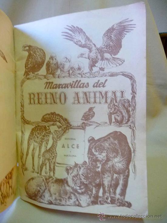 Coleccionismo Álbumes: ALBUM, MARAVILLAS DEL REINO ANIMAL, EDITORIAL ALCE, SOLO LLEVA 9 CROMOS - Foto 3 - 24175338