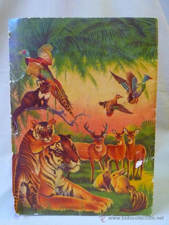 Coleccionismo Álbumes: ALBUM, MARAVILLAS DEL REINO ANIMAL, EDITORIAL ALCE, SOLO LLEVA 9 CROMOS - Foto 5 - 24175338