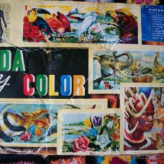 Coleccionismo Álbumes: VIDA Y COLOR, ALBUMES ESPAÑOLES, LE FALTAN 17 CROMOS. AÑO 1965. Lote 42223568