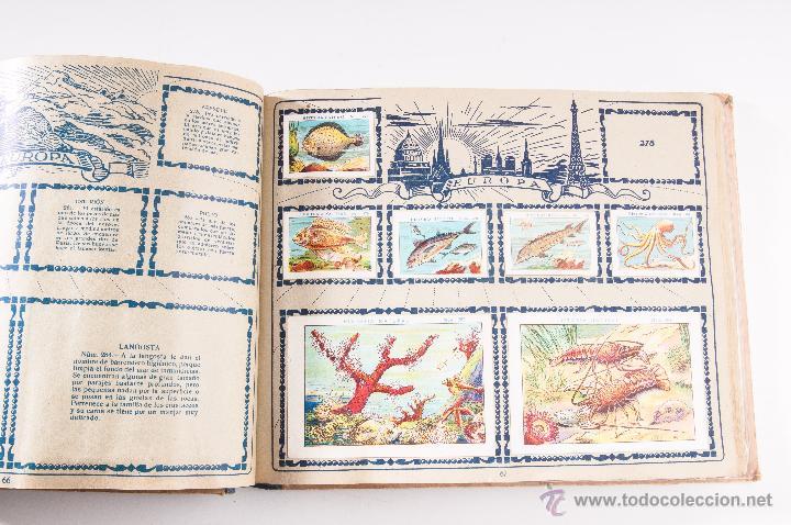 Coleccionismo Álbumes: ALBUM DE HISTORIA NATURAL,INCONPLETO COLECCION DE CHOCOLATE JUNCOSA - Foto 5 - 42356792