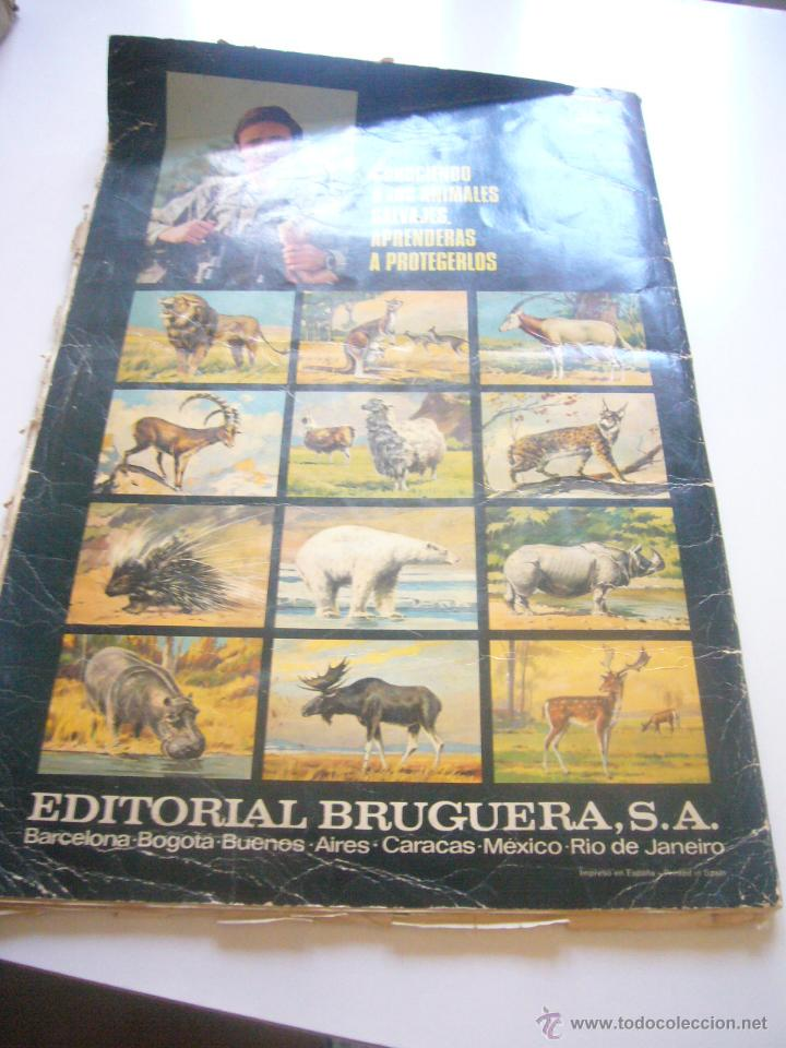 Coleccionismo Álbumes: GRAN ALBUM FÉLIX RODRÍGUEZ DE LA FUENTE EL AMIGO DE LOS ANIMALES CON 305 DE 400 CROMOS BRUGUERA dar - Foto 2 - 43120784