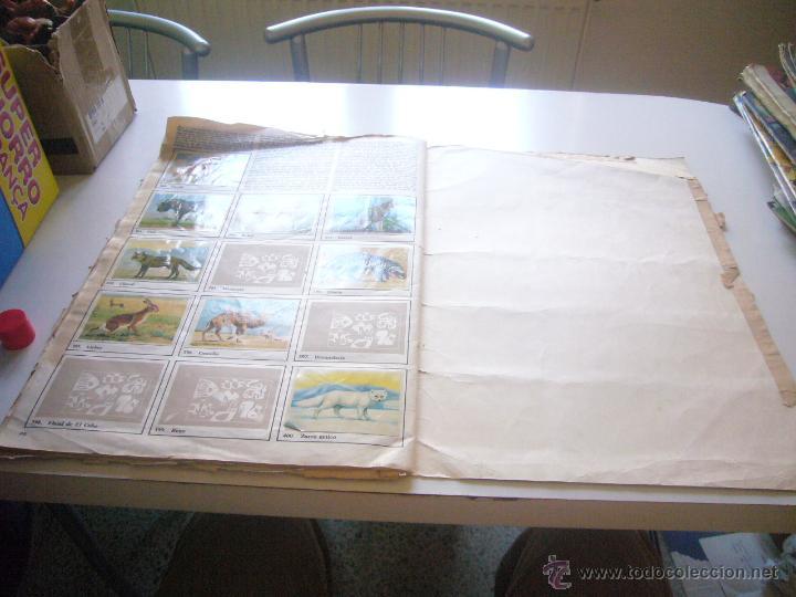 Coleccionismo Álbumes: GRAN ALBUM FÉLIX RODRÍGUEZ DE LA FUENTE EL AMIGO DE LOS ANIMALES CON 305 DE 400 CROMOS BRUGUERA dar - Foto 4 - 43120784