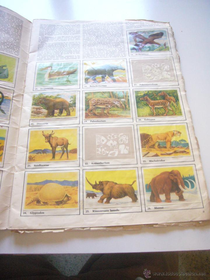 Coleccionismo Álbumes: GRAN ALBUM FÉLIX RODRÍGUEZ DE LA FUENTE EL AMIGO DE LOS ANIMALES CON 305 DE 400 CROMOS BRUGUERA dar - Foto 12 - 43120784