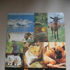 Coleccionismo Álbumes: ÁLBUM EL MUNDO DE LOS ANIMALES EN 3 DIMENSIONES PANRICO VACÍO. Lote 44024913