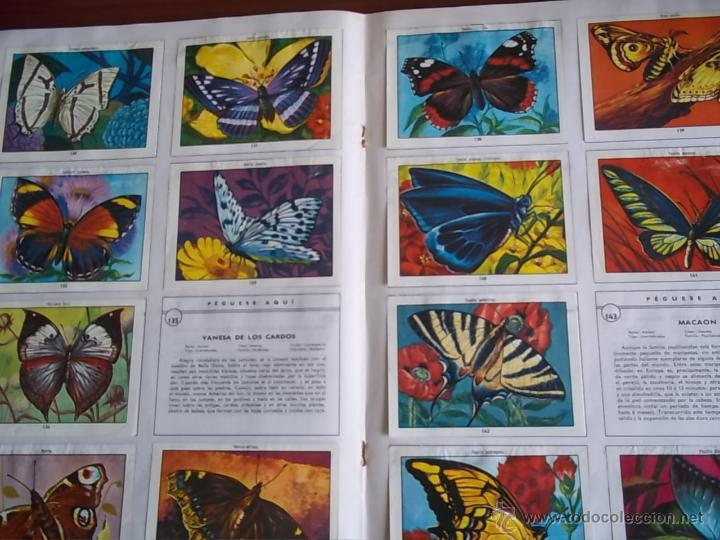 Coleccionismo Álbumes: ALBUM CIENCIAS NATURALES 1 - EDIC. EASO 1982 ( A-3 - Foto 2 - 214326007