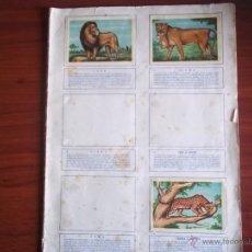 Coleccionismo Álbumes: ALBUM ANIMALES - ANTIGUO SIN TAPAS (A -4). Lote 52749702