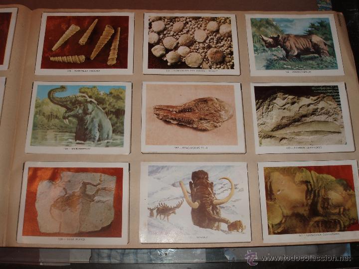 Coleccionismo Álbumes: ALBUM GEOCIENCIAS GEO CIENCIAS CASI COMPLETO FALTAN SOLO 5 CROMOS MAS VALE PROMOCIONAL - Foto 2 - 53392238