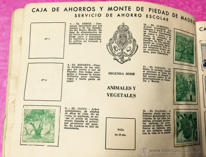 Coleccionismo Álbumes: Raro álbum libreta de ahorro infantil - Caja de Ahorros y monte de piedad de Madrid - Año 1950 - Foto 5 - 54430715