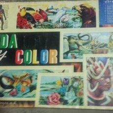 Coleccionismo Álbumes: ALBUM VIDA Y COLOR 1965- FALTAN 32 CROMOS DE 380- ALBUMES ESPAÑOLES SA. Lote 57026399