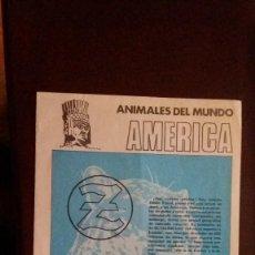 Coleccionismo Álbumes: JUANITO ZAHOR. ANIMALES DEL MUNDO. AMERICA. OPORTUNIDAD. Lote 61407499
