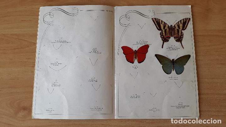 Coleccionismo Álbumes: ÁLBUM cromos LAS CIEN MARIPOSAS MÁS BELLAS DEL MUNDO EN RELIEVE / CON 32 CROMOS PANRICO - ver fotos - Foto 3 - 68985433