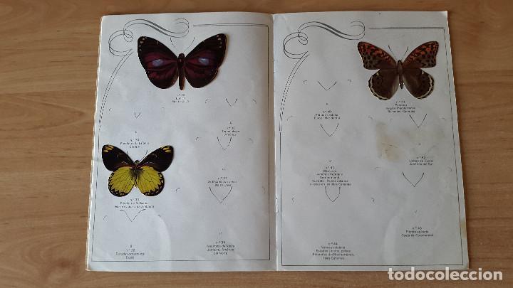 Coleccionismo Álbumes: ÁLBUM cromos LAS CIEN MARIPOSAS MÁS BELLAS DEL MUNDO EN RELIEVE / CON 32 CROMOS PANRICO - ver fotos - Foto 5 - 68985433