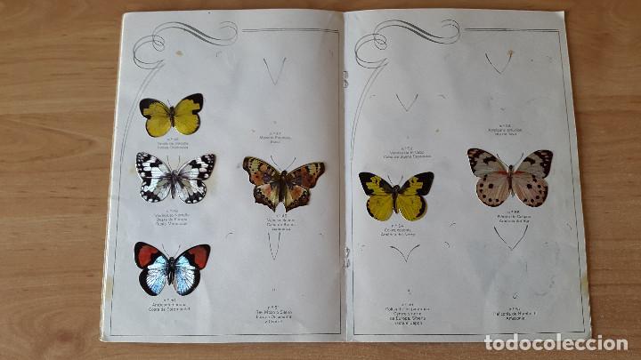 Coleccionismo Álbumes: ÁLBUM cromos LAS CIEN MARIPOSAS MÁS BELLAS DEL MUNDO EN RELIEVE / CON 32 CROMOS PANRICO - ver fotos - Foto 6 - 68985433