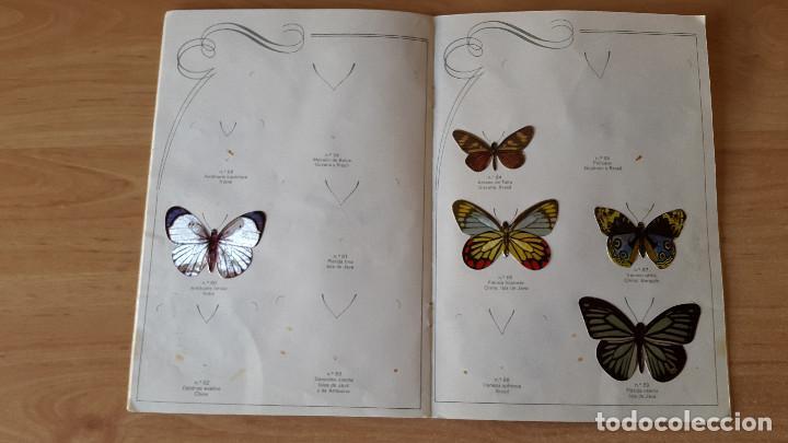 Coleccionismo Álbumes: ÁLBUM cromos LAS CIEN MARIPOSAS MÁS BELLAS DEL MUNDO EN RELIEVE / CON 32 CROMOS PANRICO - ver fotos - Foto 7 - 68985433
